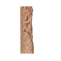 BTN Achterwand Slimline 50-D Red 10x45cm
