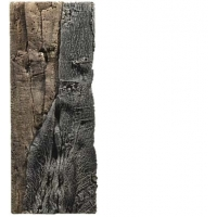 BTN Achterwand Slimline 60-C Amazone 20x55cm