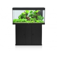 Aquatlantis Aquarium Elegance Plus 121x40x60cm Incl. LED