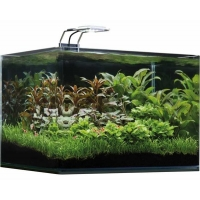 Dennerle nano scapers tank basic 35L