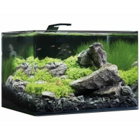 Dennerle nano scapers tank basic 55L