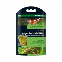 Dennerle nano algae wafers 40 st.