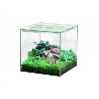 Aquatlantis aquarium volglas kubus 5L 18x18.6x18cm