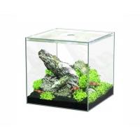 Aquatlantis aquarium full glass cube 15L 25.5x26.1x25.5cm