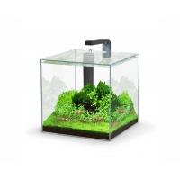 Aquatlantis aquarium full glass cube 22L 29x29.8x29cm incl ledlight