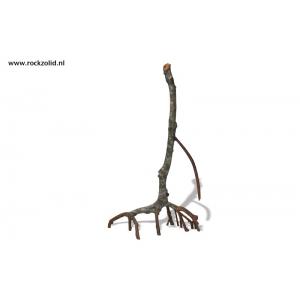 Rockzolid Mangrove E